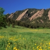 Boulder's green season: photos by Ann Duncan