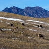 Statehouse bill addresses Rocky Flats dangers