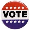 A progressive's guide to voting